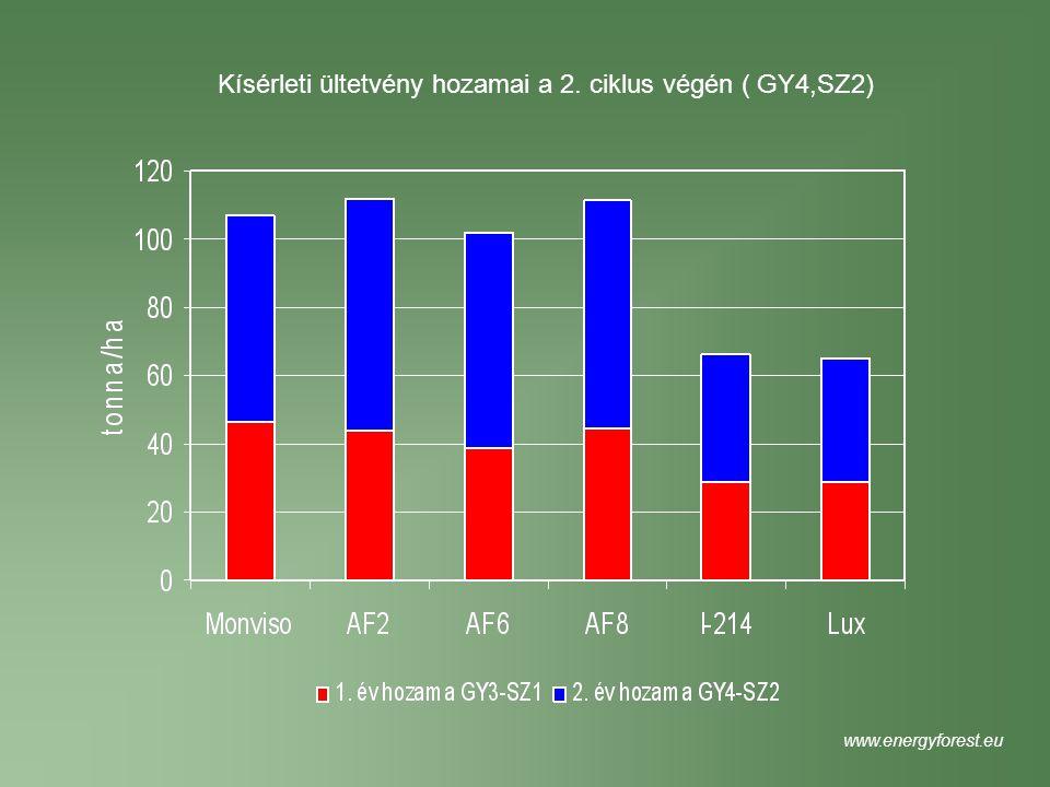 Kísérleti ültetvény hozamai a 2. ciklus végén ( GY4,SZ2) www.energyforest.eu