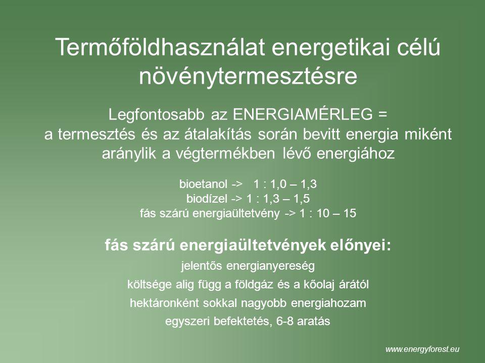 Termőföldhasználat energetikai célú növénytermesztésre Legfontosabb az ENERGIAMÉRLEG = a termesztés és az átalakítás során bevitt energia miként arány