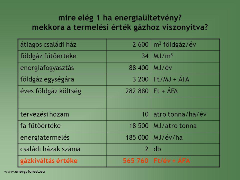 mire elég 1 ha energiaültetvény? mekkora a termelési érték gázhoz viszonyítva? átlagos családi ház2 600m 3 földgáz/év földgáz fűtőértéke34MJ/m 3 energ