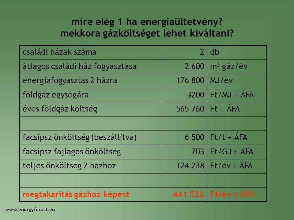 mire elég 1 ha energiaültetvény? mekkora gázköltséget lehet kiváltani? családi házak száma2db átlagos családi ház fogyasztása2 600m 3 gáz/év energiafo