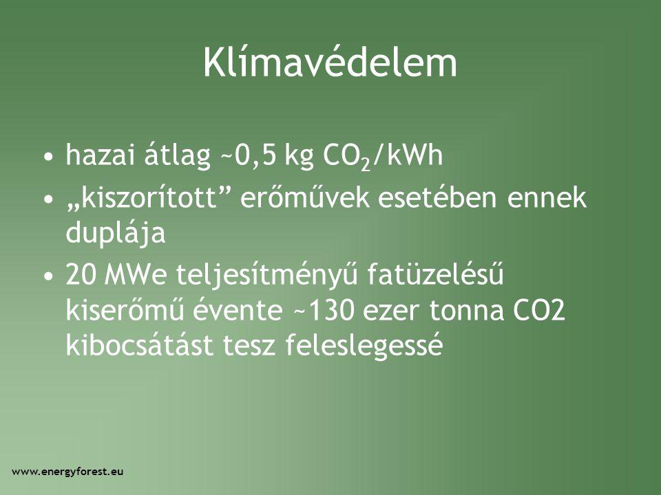 """Klímavédelem •hazai átlag ~0,5 kg CO 2 /kWh •""""kiszorított"""" erőművek esetében ennek duplája •20 MWe teljesítményű fatüzelésű kiserőmű évente ~130 ezer"""