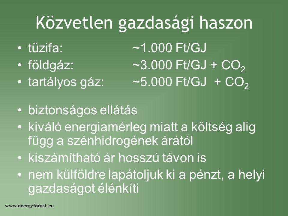 Közvetlen gazdasági haszon •tüzifa:~1.000 Ft/GJ •földgáz:~3.000 Ft/GJ + CO 2 •tartályos gáz:~5.000 Ft/GJ + CO 2 •biztonságos ellátás •kiváló energiamé