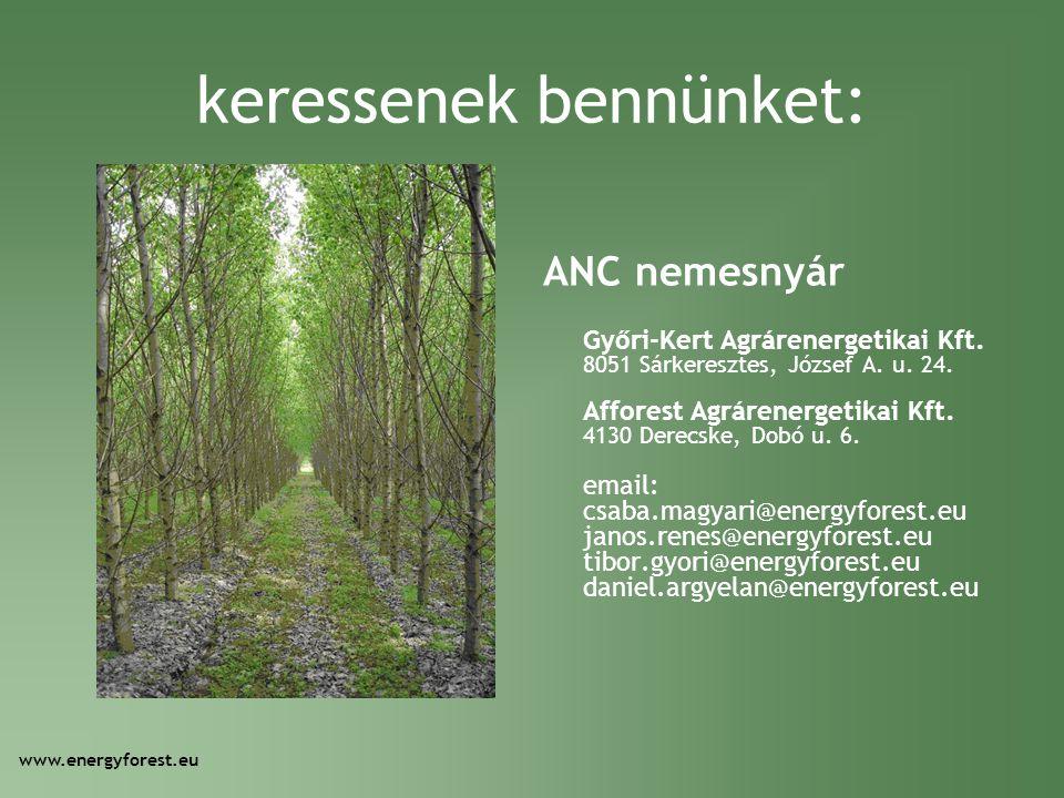 keressenek bennünket: ANC nemesnyár Győri-Kert Agrárenergetikai Kft. 8051 Sárkeresztes, József A. u. 24. Afforest Agrárenergetikai Kft. 4130 Derecske,