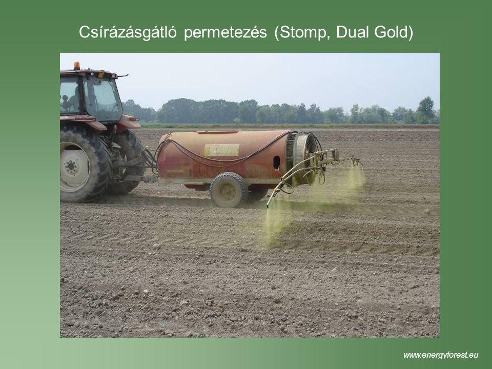 Tervezési hozam: 10 atro tonna/ha/év (40 nedves tonna/aratás) www.energyforest.eu