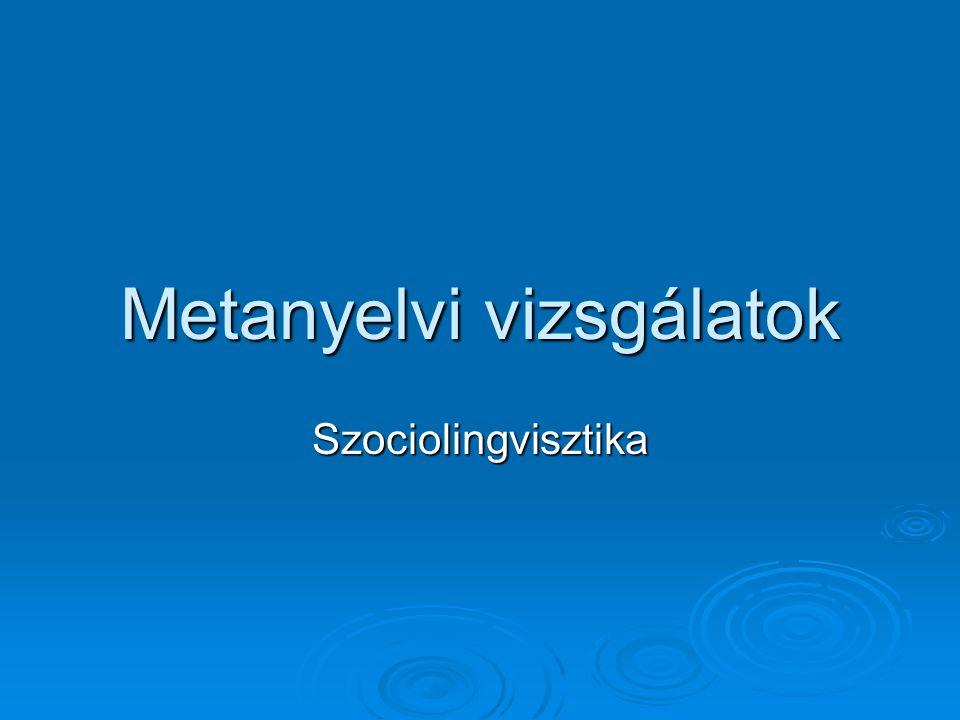 Metanyelvi vizsgálatok Szociolingvisztika