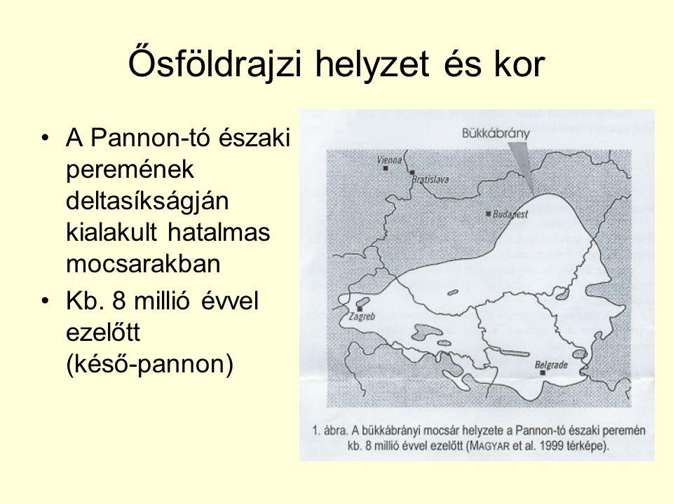 Ősföldrajzi helyzet és kor •A Pannon-tó északi peremének deltasíkságján kialakult hatalmas mocsarakban •Kb.
