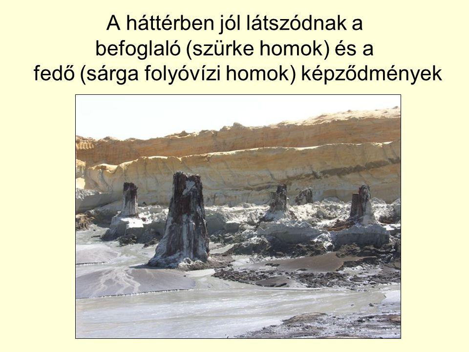 A háttérben jól látszódnak a befoglaló (szürke homok) és a fedő (sárga folyóvízi homok) képződmények