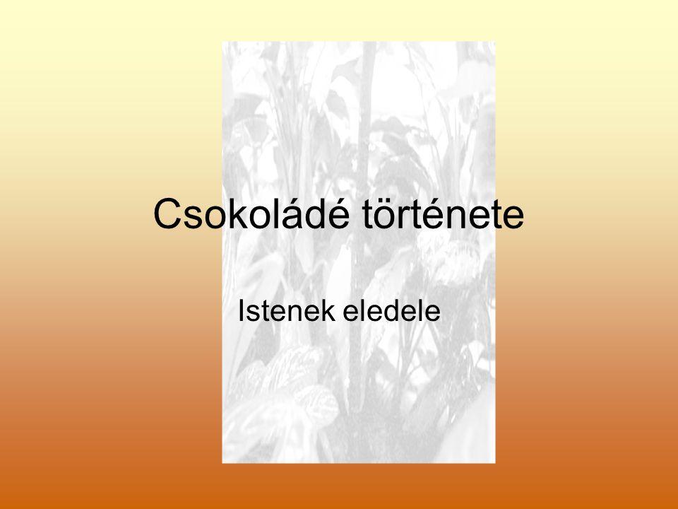 Kakaó A kakaó növény története az i.sz.