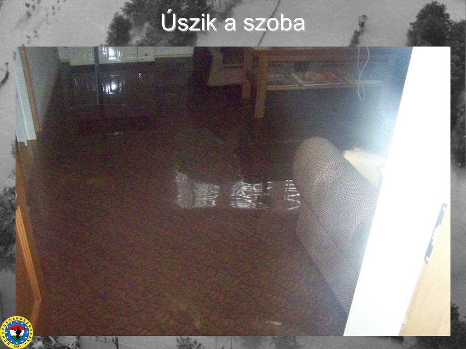 Úszik a szoba