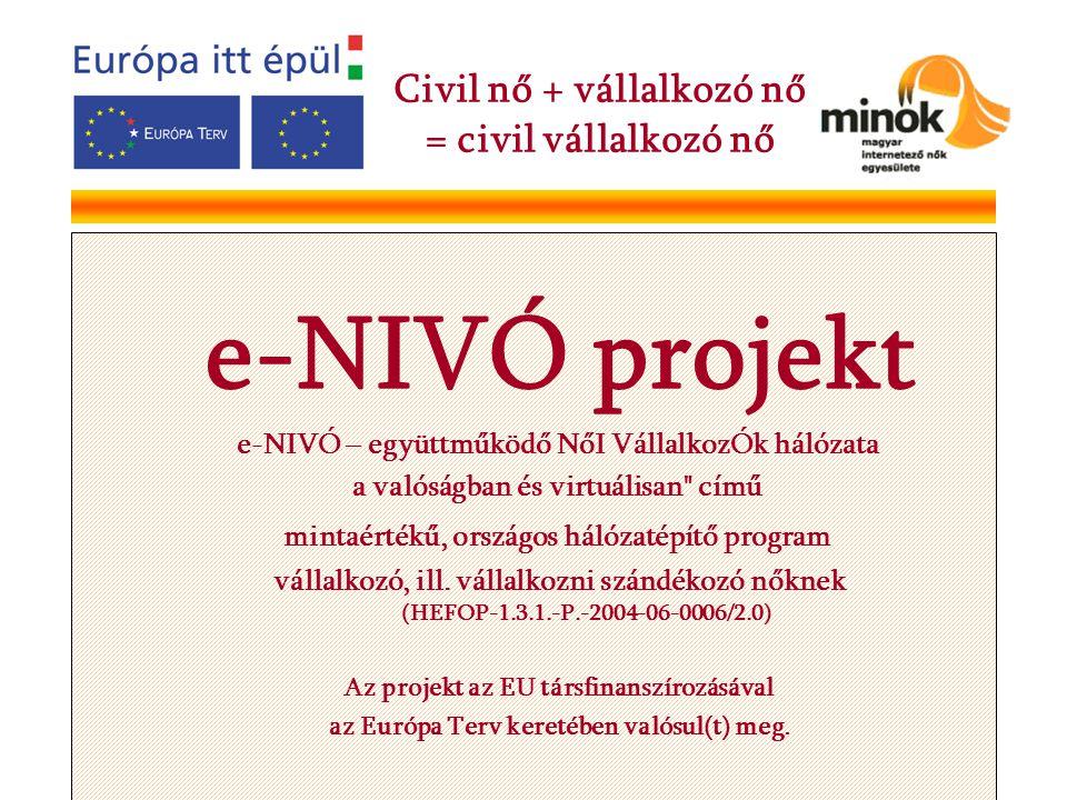 e-NIVÓ projekt e-NIVÓ – együttműködő NőI VállalkozÓk hálózata a valóságban és virtuálisan című mintaértékű, országos hálózatépítő program vállalkozó, ill.
