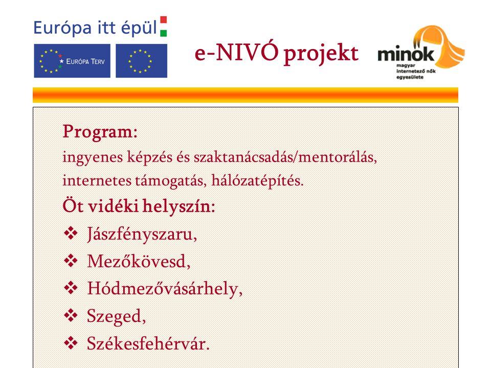 Program: ingyenes képzés és szaktanácsadás/mentorálás, internetes támogatás, hálózatépítés.