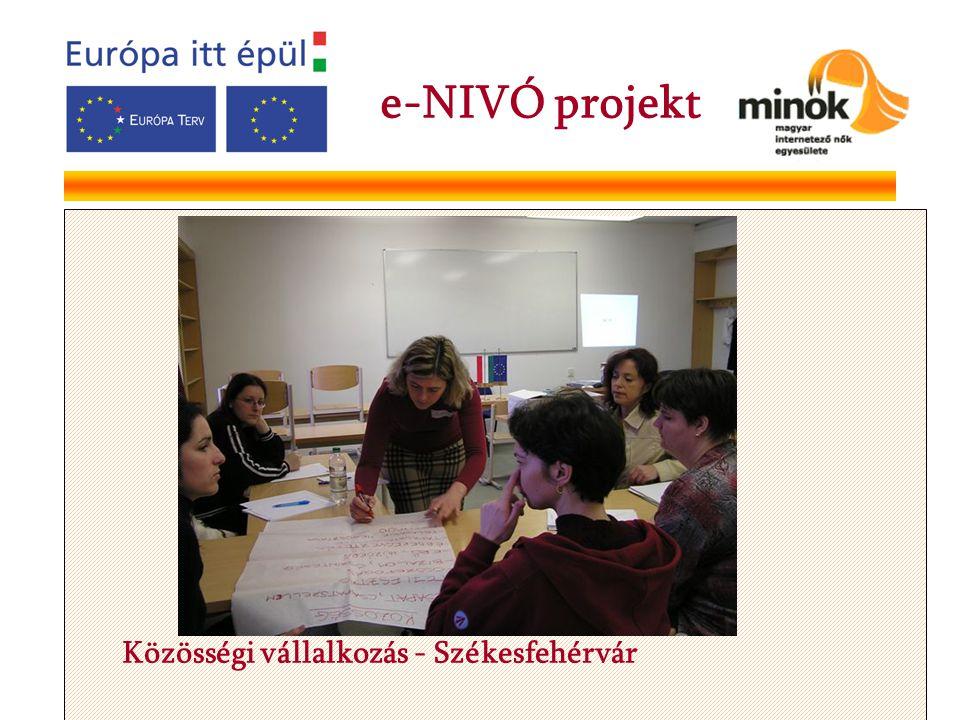 Közösségi vállalkozás - Székesfehérvár e-NIVÓ projekt