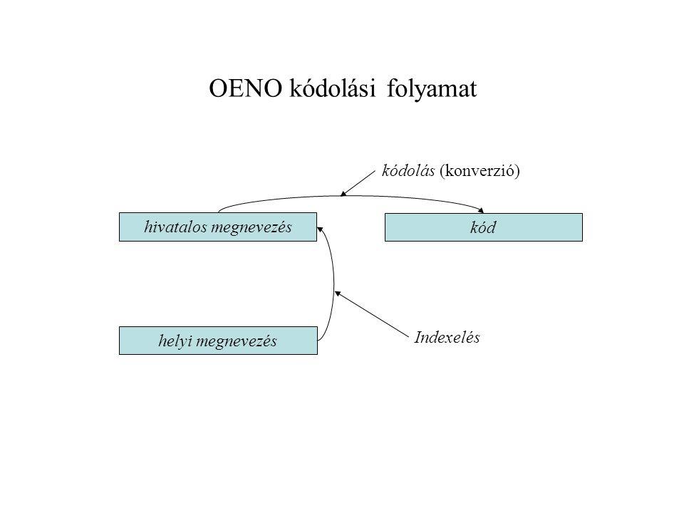 OENO kódolási folyamat helyi megnevezés hivatalos megnevezés kód Indexelés kódolás (konverzió)