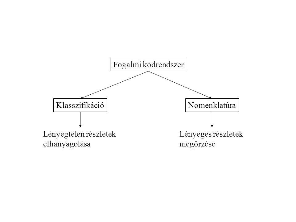 Fogalmi kódrendszer KlasszifikációNomenklatúra Lényegtelen részletek elhanyagolása Lényeges részletek megőrzése