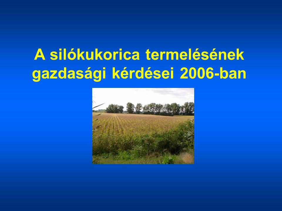 A silókukorica termelésének gazdasági kérdései 2006-ban
