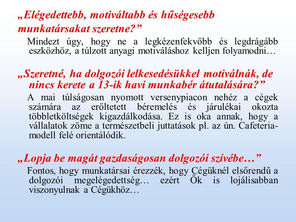 4.Mit biztosítunk Cégének illetve a munkatársaiknak.