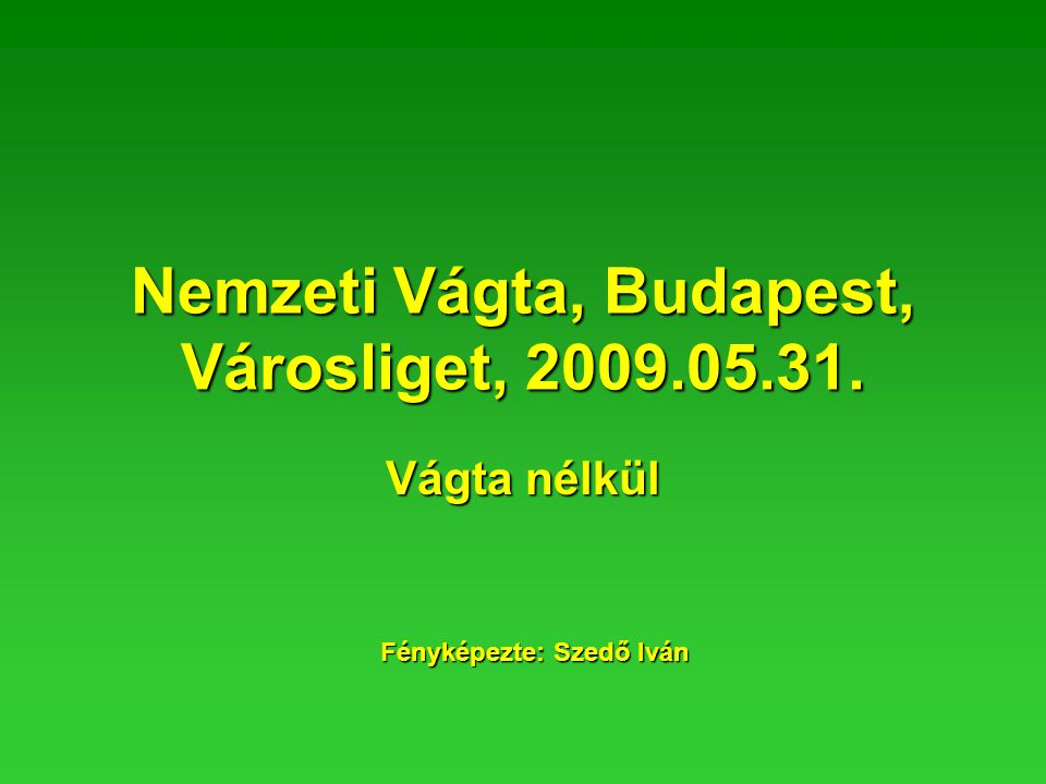 Nemzeti Vágta, Budapest, Városliget, 2009.05.31. Vágta nélkül Fényképezte: Szedő Iván