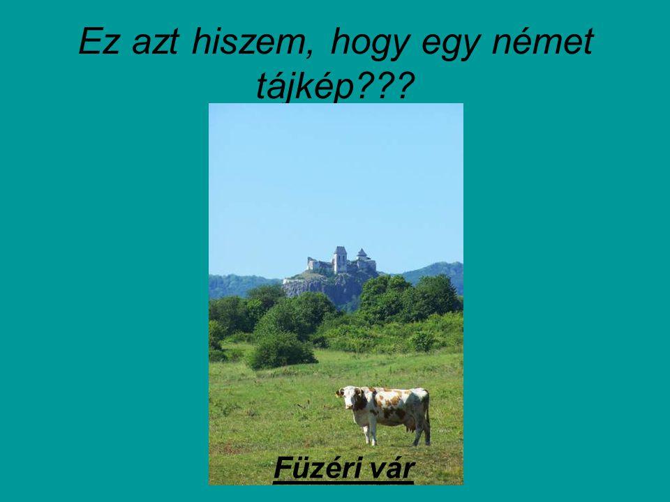 Ez is szép…ez viszont magyar… Gödöllő