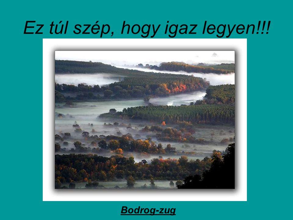Feladom… Visegrád – Duna- kanyar