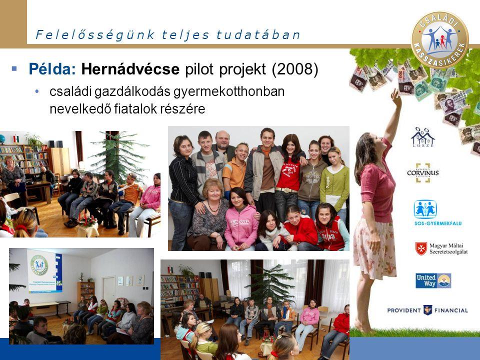 F e l e l ő s s é g ü n k t e l j e s t u d a t á b a n  Példa: Hernádvécse pilot projekt (2008) •családi gazdálkodás gyermekotthonban nevelkedő fiatalok részére