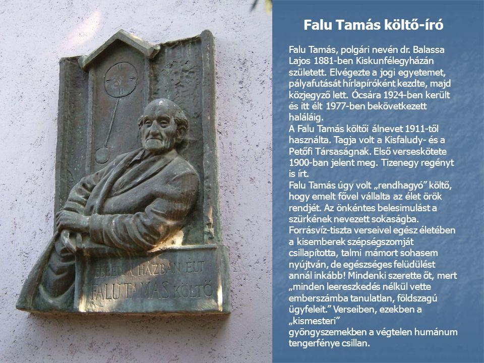 Falu Tamás költő-író Falu Tamás, polgári nevén dr.