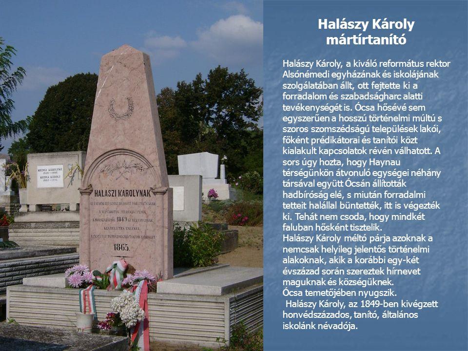 Halászy Károly mártírtanító Halászy Károly, a kiváló református rektor Alsónémedi egyházának és iskolájának szolgálatában állt, ott fejtette ki a forradalom és szabadságharc alatti tevékenységét is.