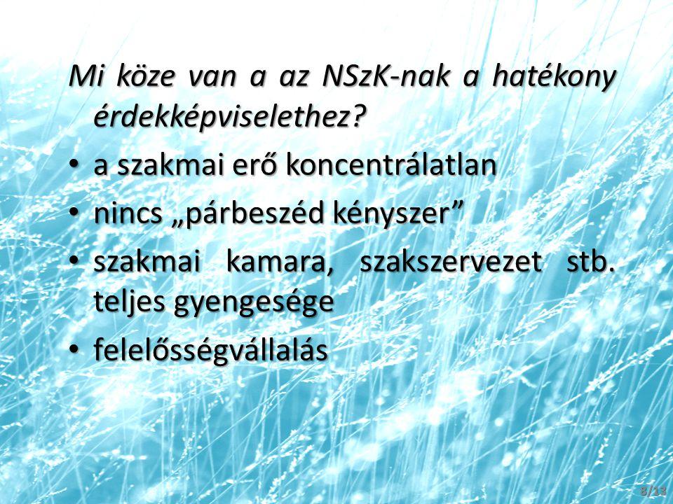 Mi köze van a az NSzK-nak a hatékony érdekképviselethez.
