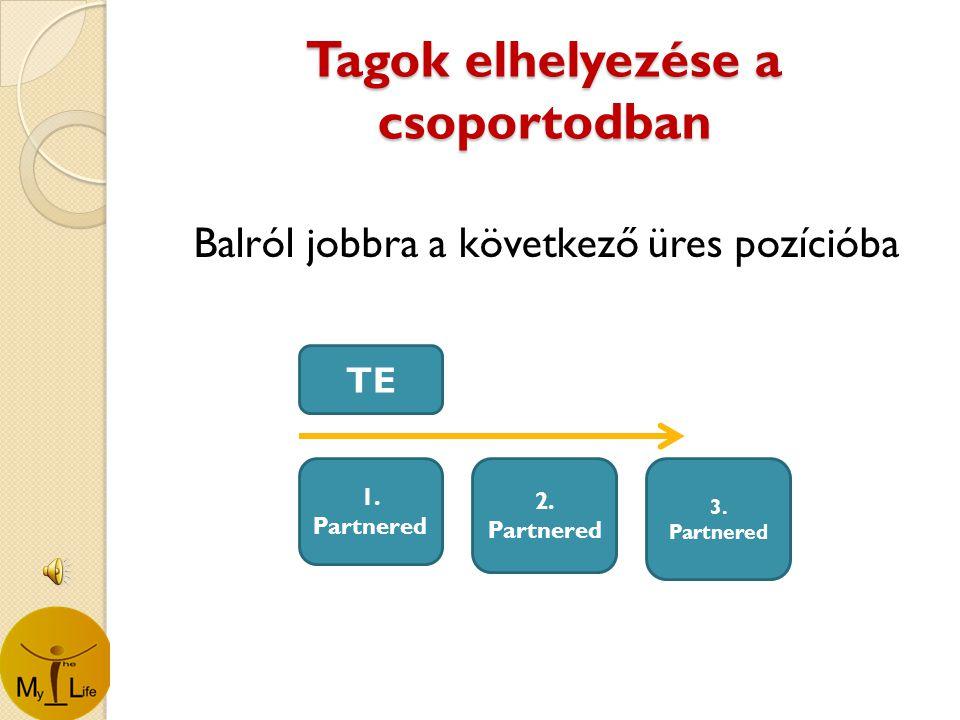 Tagok elhelyezése a csoportodban Balról jobbra a következő üres pozícióba TE 1.