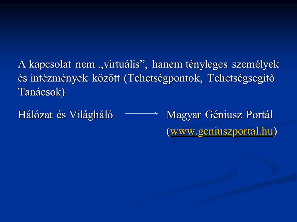 """A kapcsolat nem """"virtuális"""", hanem tényleges személyek és intézmények között (Tehetségpontok, Tehetségsegítő Tanácsok) Hálózat és Világháló Magyar Gén"""