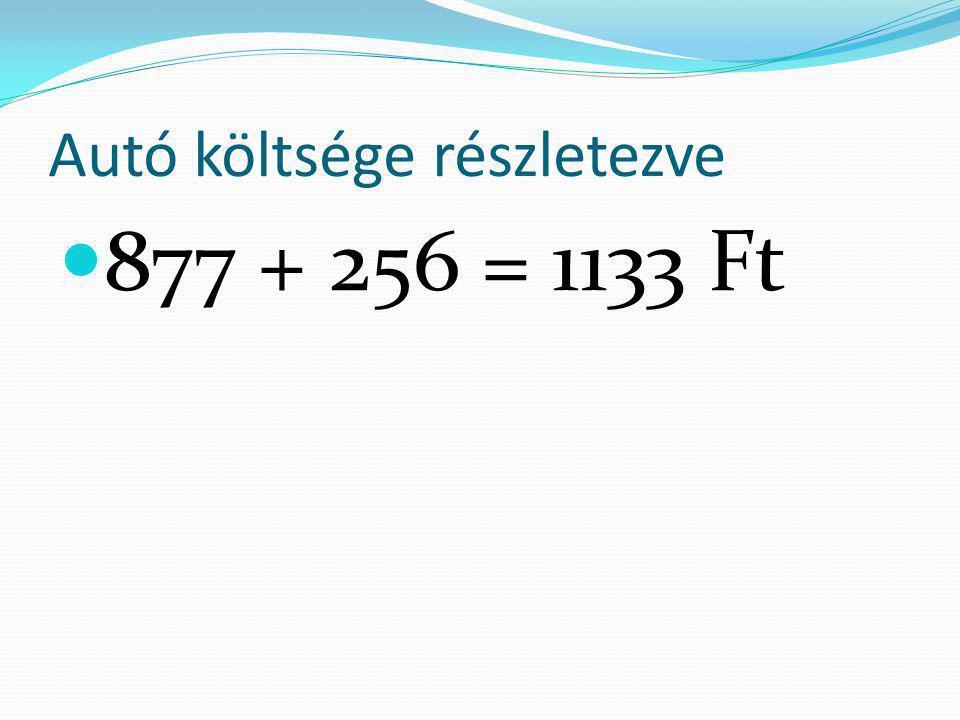 Autó költsége részletezve  877 + 256 = 1133 Ft