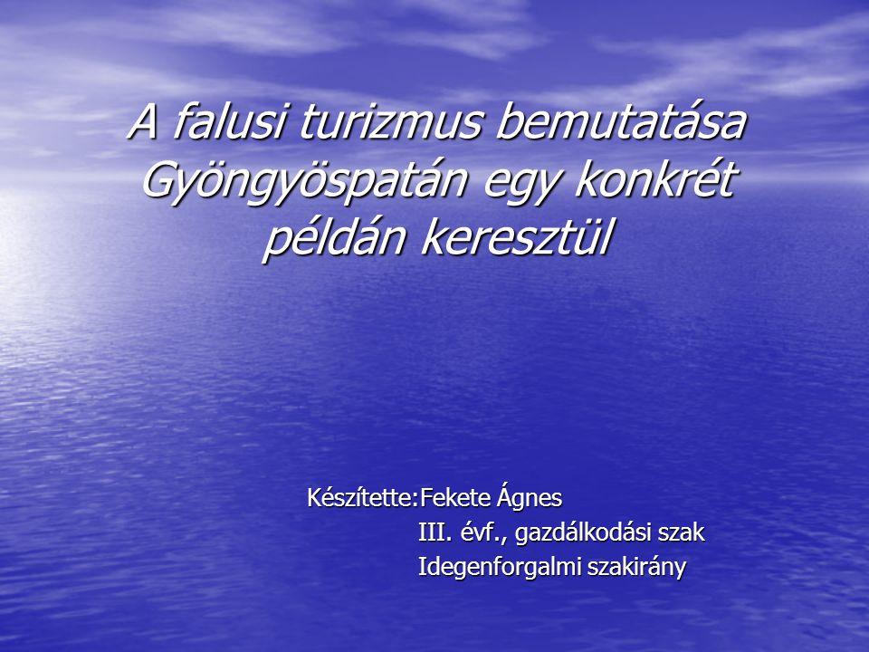 A falusi turizmus bemutatása Gyöngyöspatán egy konkrét példán keresztül Készítette:Fekete Ágnes III. évf., gazdálkodási szak III. évf., gazdálkodási s