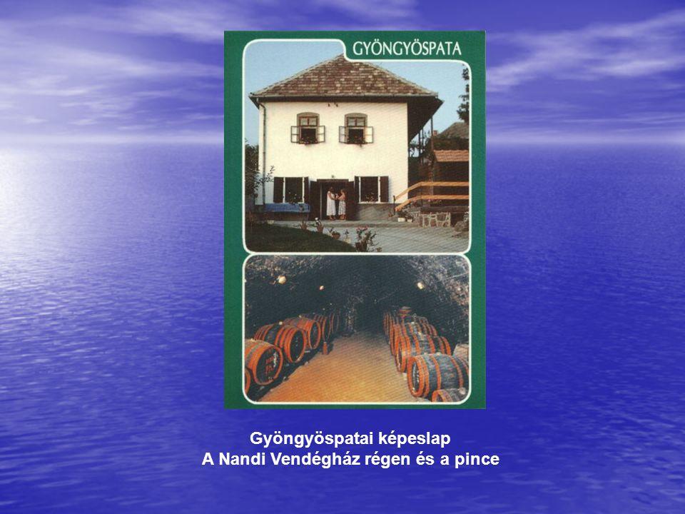 Gyöngyöspatai képeslap A Nandi Vendégház régen és a pince