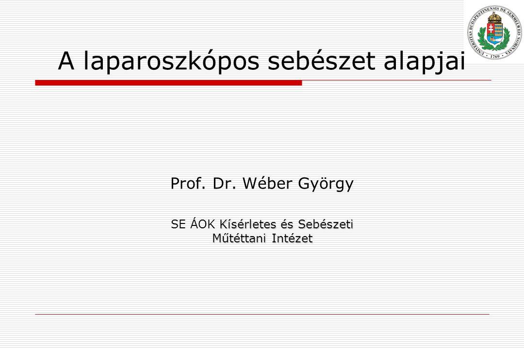 A laparoszkópos sebészet alapjai Prof.Dr.