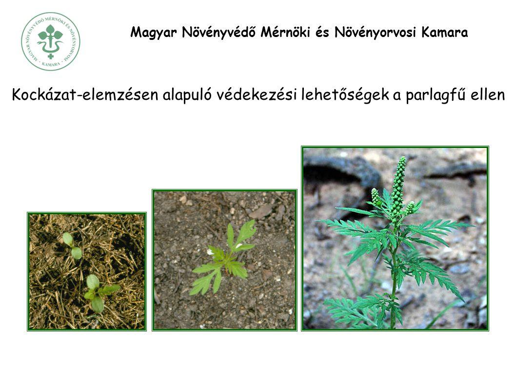 Magyar Növényvédő Mérnöki és Növényorvosi Kamara Kockázat-elemzésen alapuló védekezési lehetőségek a parlagfű ellen