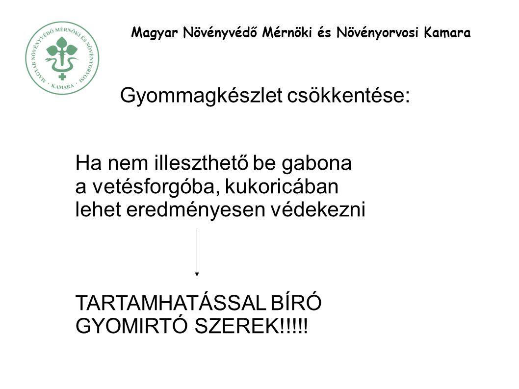 Magyar Növényvédő Mérnöki és Növényorvosi Kamara Gyommagkészlet csökkentése: Ha nem illeszthető be gabona a vetésforgóba, kukoricában lehet eredményesen védekezni TARTAMHATÁSSAL BÍRÓ GYOMIRTÓ SZEREK!!!!!