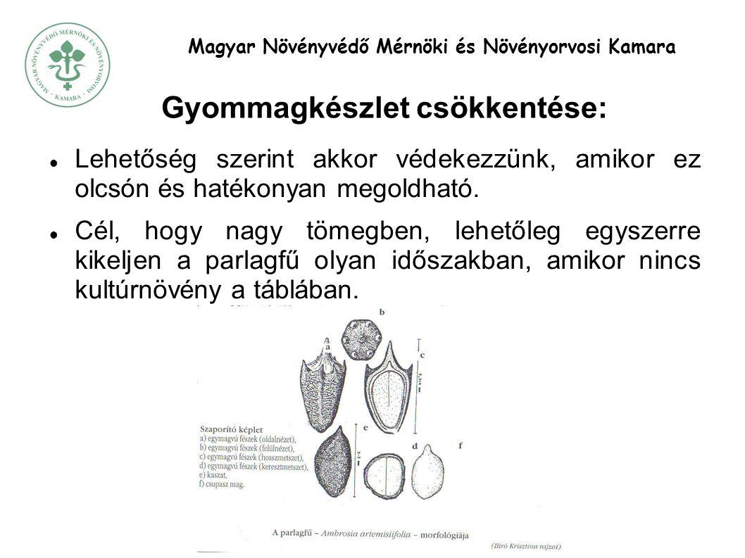 Magyar Növényvédő Mérnöki és Növényorvosi Kamara Gyommagkészlet csökkentése:  Lehetőség szerint akkor védekezzünk, amikor ez olcsón és hatékonyan megoldható.