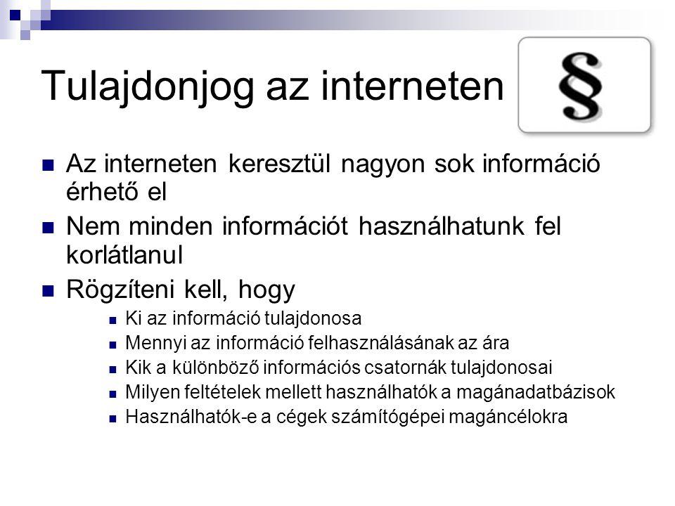 Tulajdonjog az interneten  Az interneten keresztül nagyon sok információ érhető el  Nem minden információt használhatunk fel korlátlanul  Rögzíteni