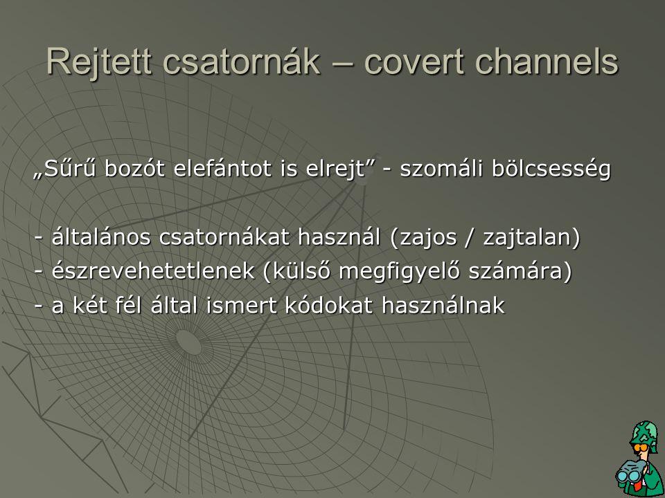 """""""Sűrű bozót elefántot is elrejt - szomáli bölcsesség - általános csatornákat használ (zajos / zajtalan) - észrevehetetlenek (külső megfigyelő számára) - a két fél által ismert kódokat használnak Rejtett csatornák – covert channels"""