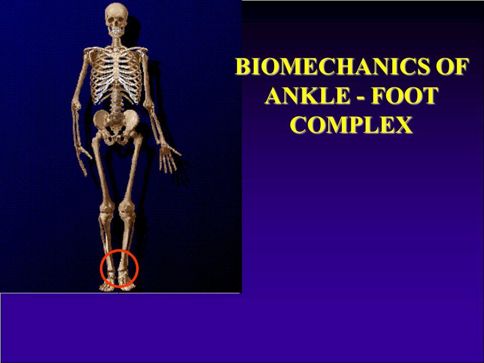 BIOMECHANICS OF ANKLE - FOOT COMPLEX