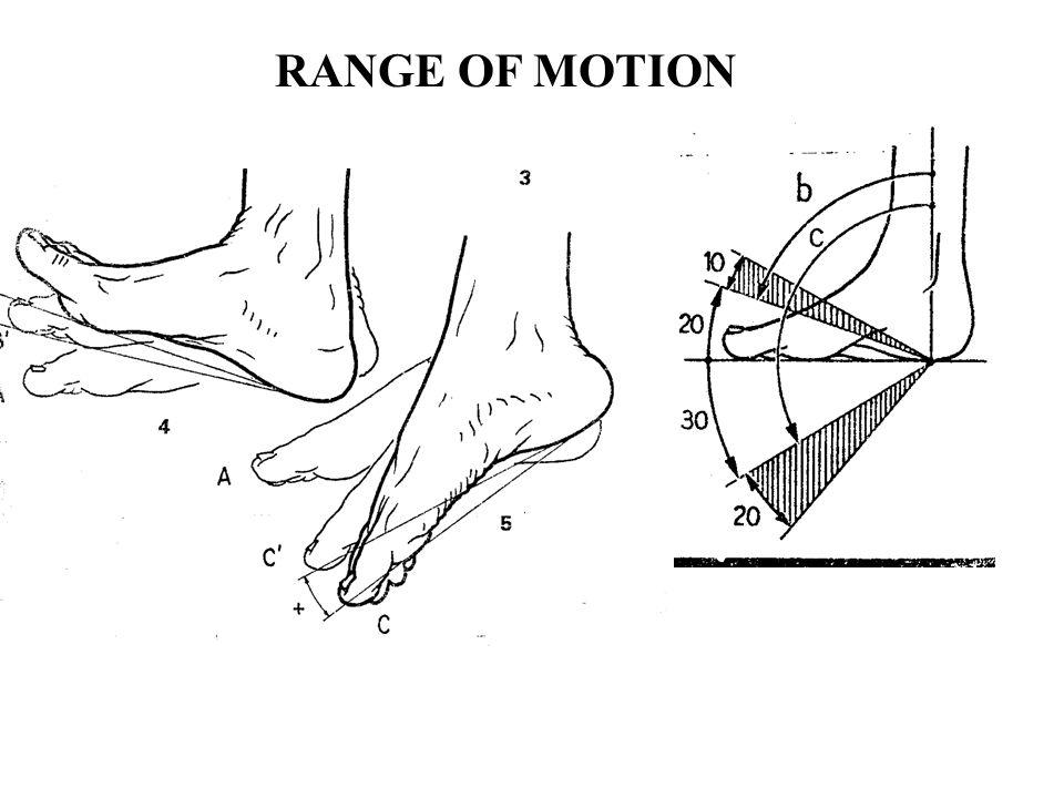 Ízületi mozgástartomány