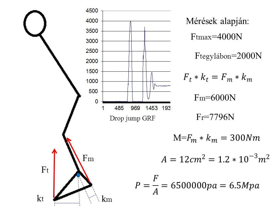 FtFt FmFm kmkm ktkt mg mg=800NF tegylábon =400N kt=15cmkm=5cm Fm=1200N FtFt FmFm Fr=1560N α α α=30˚ Lábujjhegyen állás kezdete