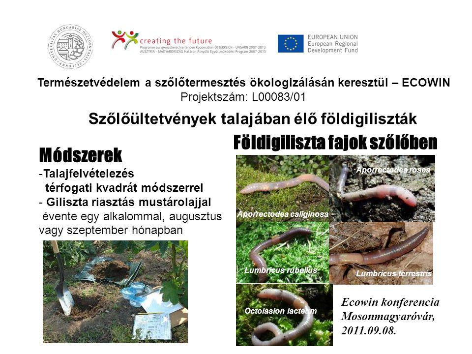Természetvédelem a szőlőtermesztés ökologizálásán keresztül – ECOWIN Projektszám: L00083/01 Földigiliszta fajok szőlőben Szőlőültetvények talajában él