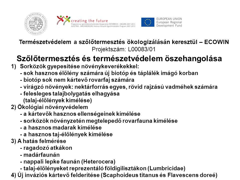 Természetvédelem a szőlőtermesztés ökologizálásán keresztül – ECOWIN Projektszám: L00083/01 Szőlőtermesztés és természetvédelem öszehangolása 1)Sorköz