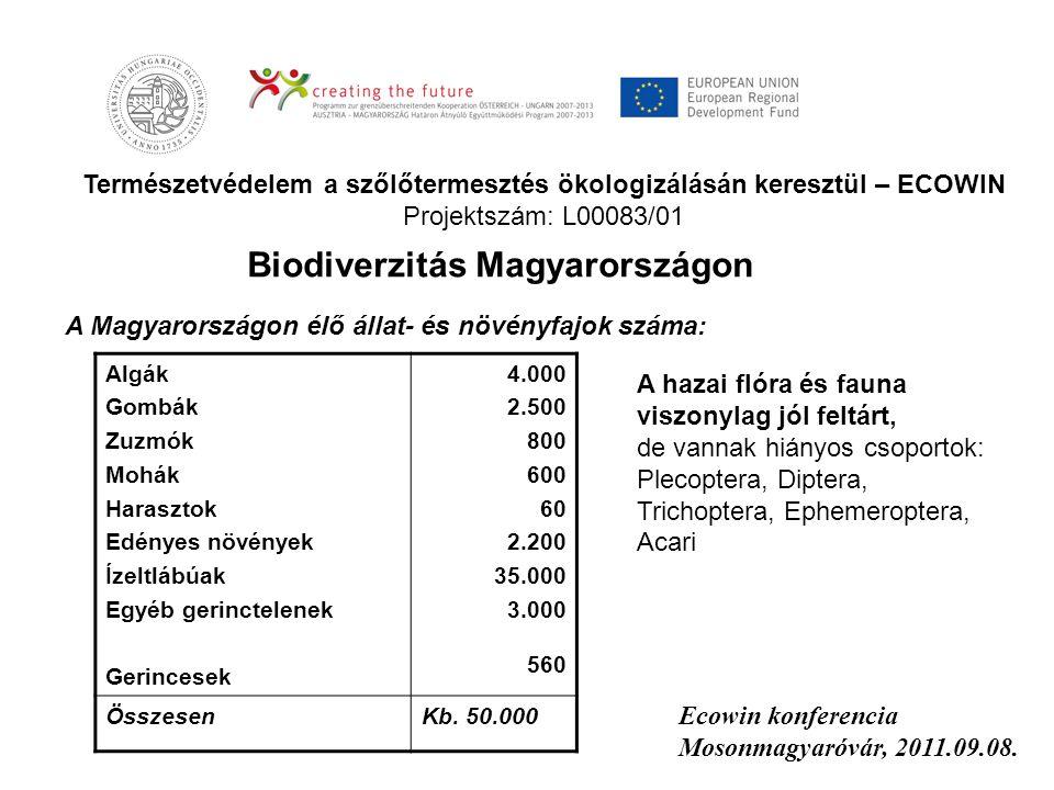 Természetvédelem a szőlőtermesztés ökologizálásán keresztül – ECOWIN Projektszám: L00083/01 Ecowin konferencia Mosonmagyaróvár, 2011.09.08. Algák Gomb