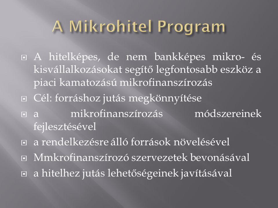  A hitelképes, de nem bankképes mikro- és kisvállalkozásokat segítő legfontosabb eszköz a piaci kamatozású mikrofinanszírozás  Cél: forráshoz jutás megkönnyítése  a mikrofinanszírozás módszereinek fejlesztésével  a rendelkezésre álló források növelésével  Mmkrofinanszírozó szervezetek bevonásával  a hitelhez jutás lehetőségeinek javításával