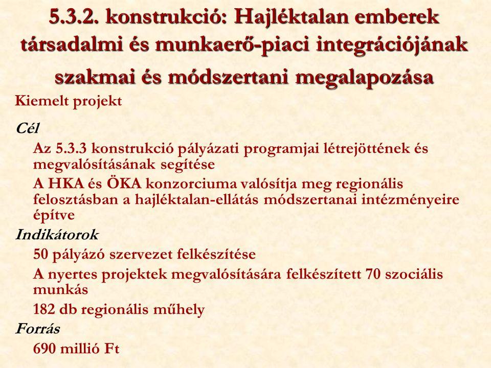5.3.2. konstrukció: Hajléktalan emberek társadalmi és munkaerő-piaci integrációjának szakmai és módszertani megalapozása Kiemelt projekt Cél Az 5.3.3