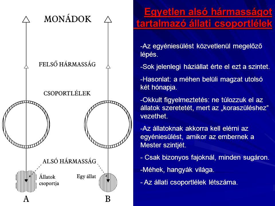 Egyetlen alsó hármasságot tartalmazó állati csoportlélek -Az egyéniesülést közvetlenül megelőző lépés. -Sok jelenlegi háziállat érte el ezt a szintet.