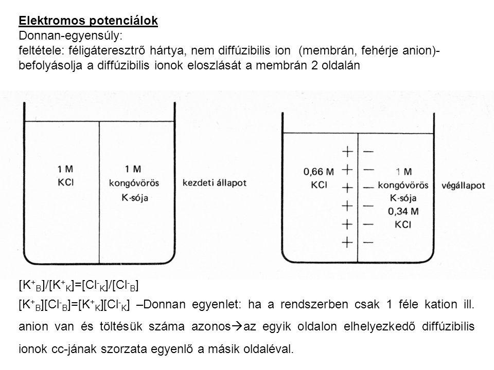  K + B  /[K + K ]=[Cl - K ]/[Cl - B ] [K + B ][Cl - B ]=[K + K ][Cl - K ] –Donnan egyenlet: ha a rendszerben csak 1 féle kation ill. anion van és tö
