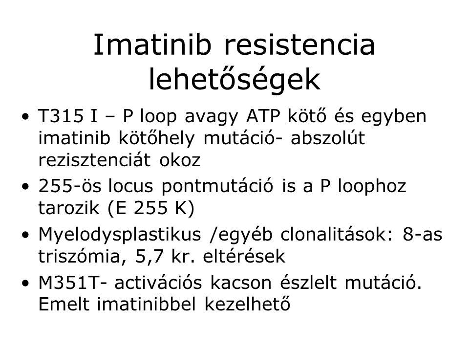 Imatinib resistencia lehetőségek •T315 I – P loop avagy ATP kötő és egyben imatinib kötőhely mutáció- abszolút rezisztenciát okoz •255-ös locus pontmu