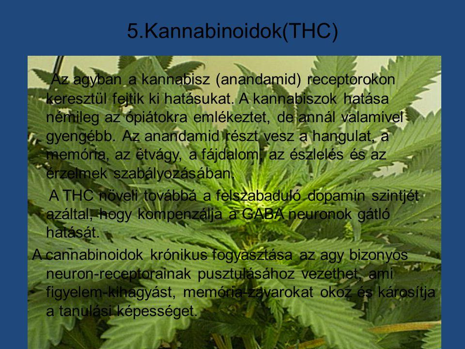 5.Kannabinoidok(THC) Az agyban a kannabisz (anandamid) receptorokon keresztül fejtik ki hatásukat. A kannabiszok hatása némileg az ópiátokra emlékezte